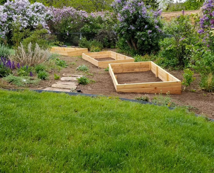 DIY Raised Garden Beds for the Backyard ~ All She Pictures
